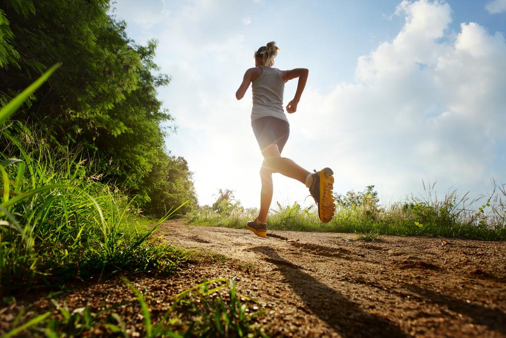 exercise vascular health
